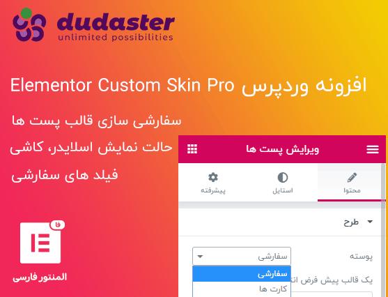 افزونه Elementor Custom Skin Pro